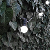 10 metre, 20 Golf Ball Lamp Festoon String, 500mm Spacing with 20 bulbs, B22, Cool White4