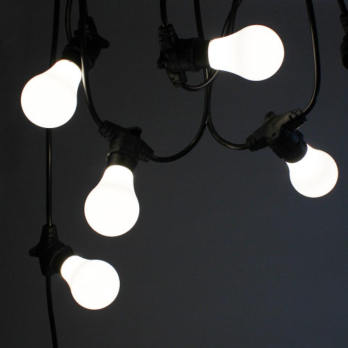 10 metre, 20 GLS Lamp Festoon String, 500mm Spacing with 20 bulbs, B22, Cool White