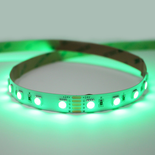 24V Essential Toning Series RGB+W 6000K 60 LEDs, 19.2w Per Metre, 5 Metre Reel