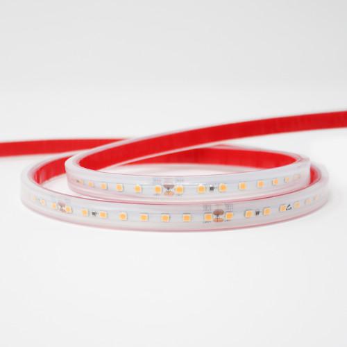 24V Professional SMD Series LED Tape, 9.6w p/m, 128 LEDs p/m, CRI>90, 6000K, 5 Metre Reel, IP67