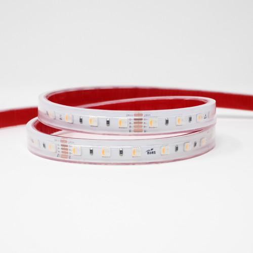 24V Professional Toning Series LED Tape, RGB+2700K, CRI >90, 60 LEDs p/m, 19.2w p/m, 5 Metre Reel, IP67