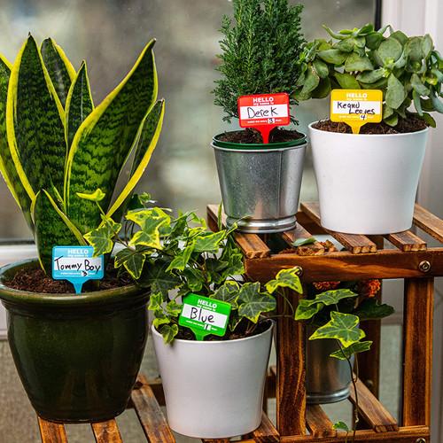 PLANT NAME BADGES X12