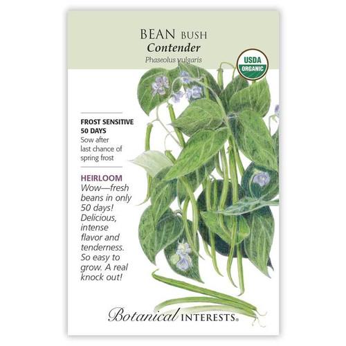 SEED BEAN BUSH (GREEN) CONTENDER ORG