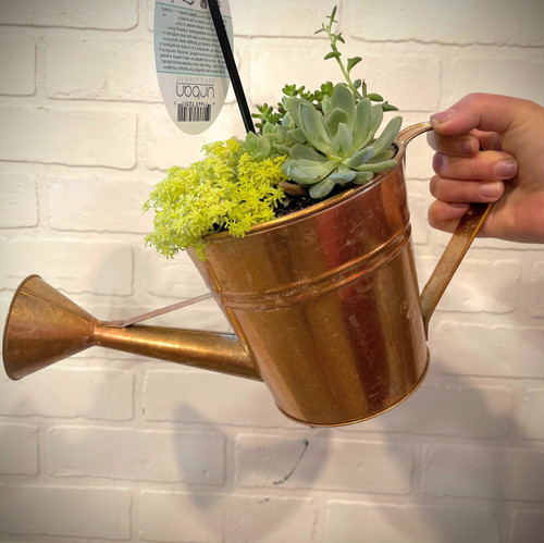 SUCCULENT WATERING CAN PLANTER
