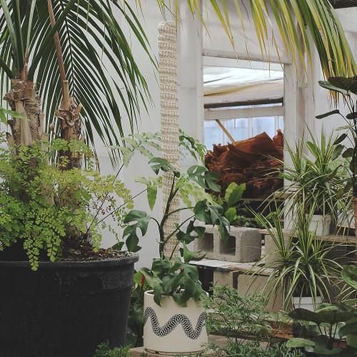 STACKABLE PLANT POLE 1