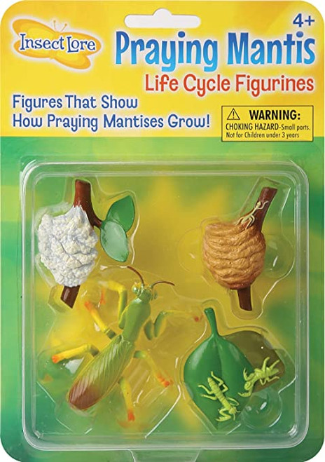 MANTIS LIFE CYCLE FIGURINES