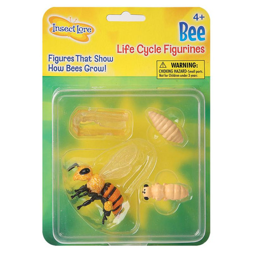 BEE LIFE CYCLE FIGURINES