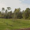 Batting Cage Net Outside