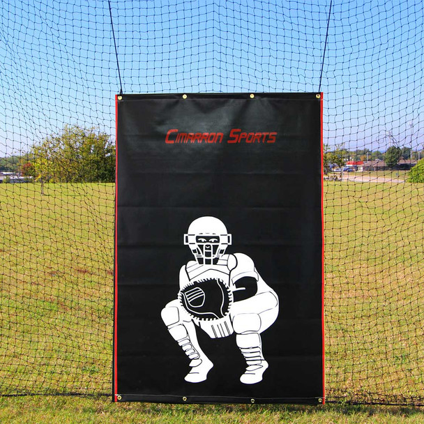 Batting Cage Backstop 4x6 Heavy Duty Vinyl wCatcher