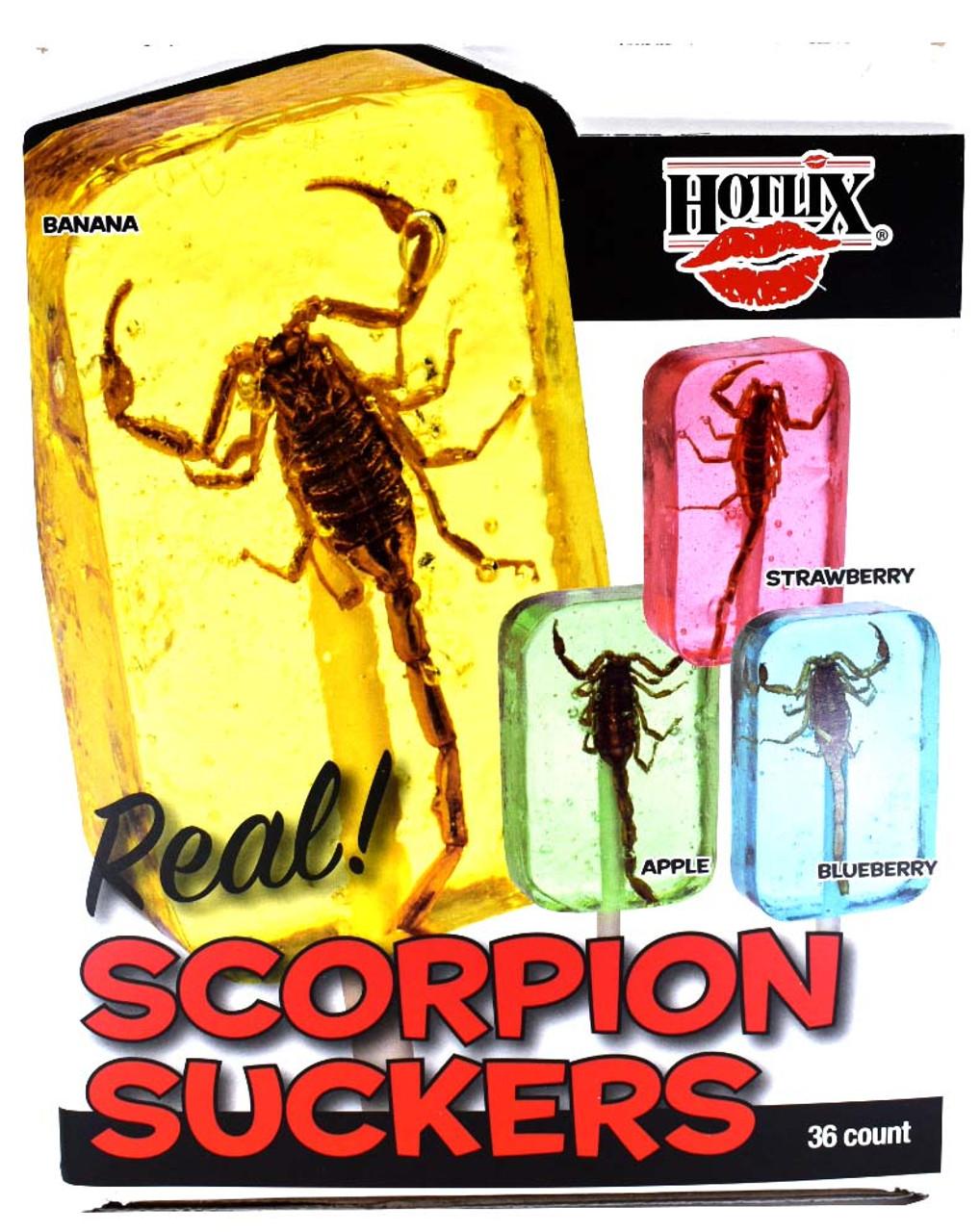 Scorpion Lollipops Assorted