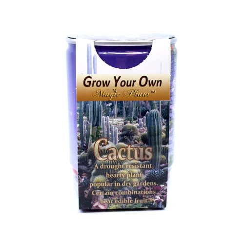 Cactus Growing kit