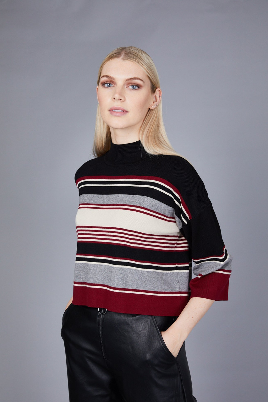 Native Youth Stripe High Neck Crop Knit