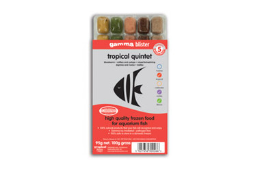 Tropical Quintet (Blister Pack) :: 0729280