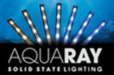 AquaBeam 600 Single 1 x 12W Reef Blue :: 0752290