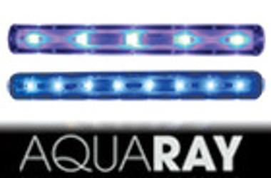 AquaBeam 600 Ultima Combo Fiji Blue/Reef Blue :: 0752990