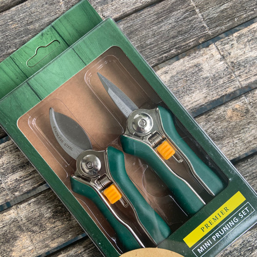 Mini Pruning Set