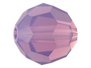 Cyclamen Opal