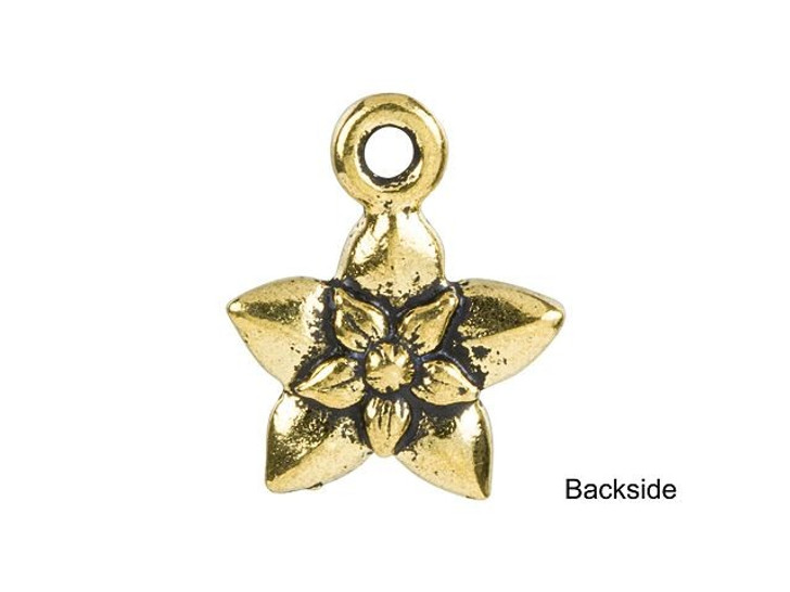 TierraCast Antique Gold-Plated Pewter Star Jasmine Charm