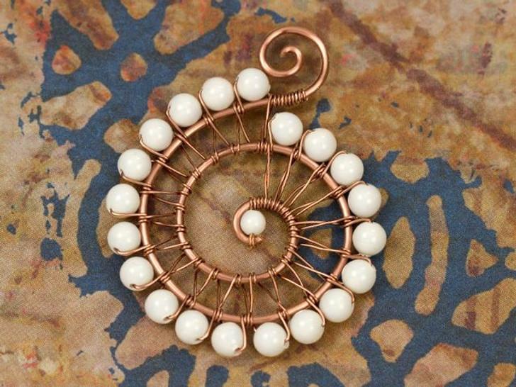 Ammonite Inspired