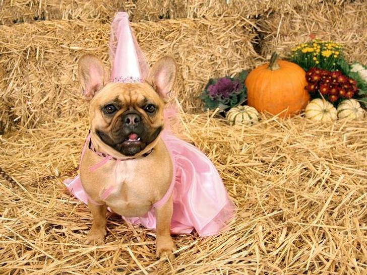 Minnie's Fairytale Princess