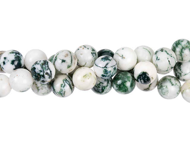 Tree Agate Gemstones
