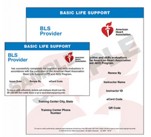 Basic Life Support BLS