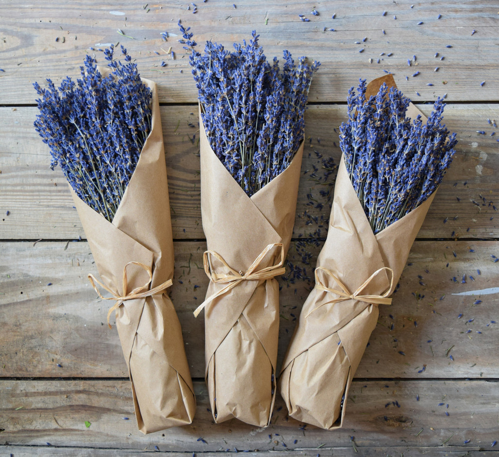 FRENCH LAVENDER - IN KRAFT PAPER - MIN. 12