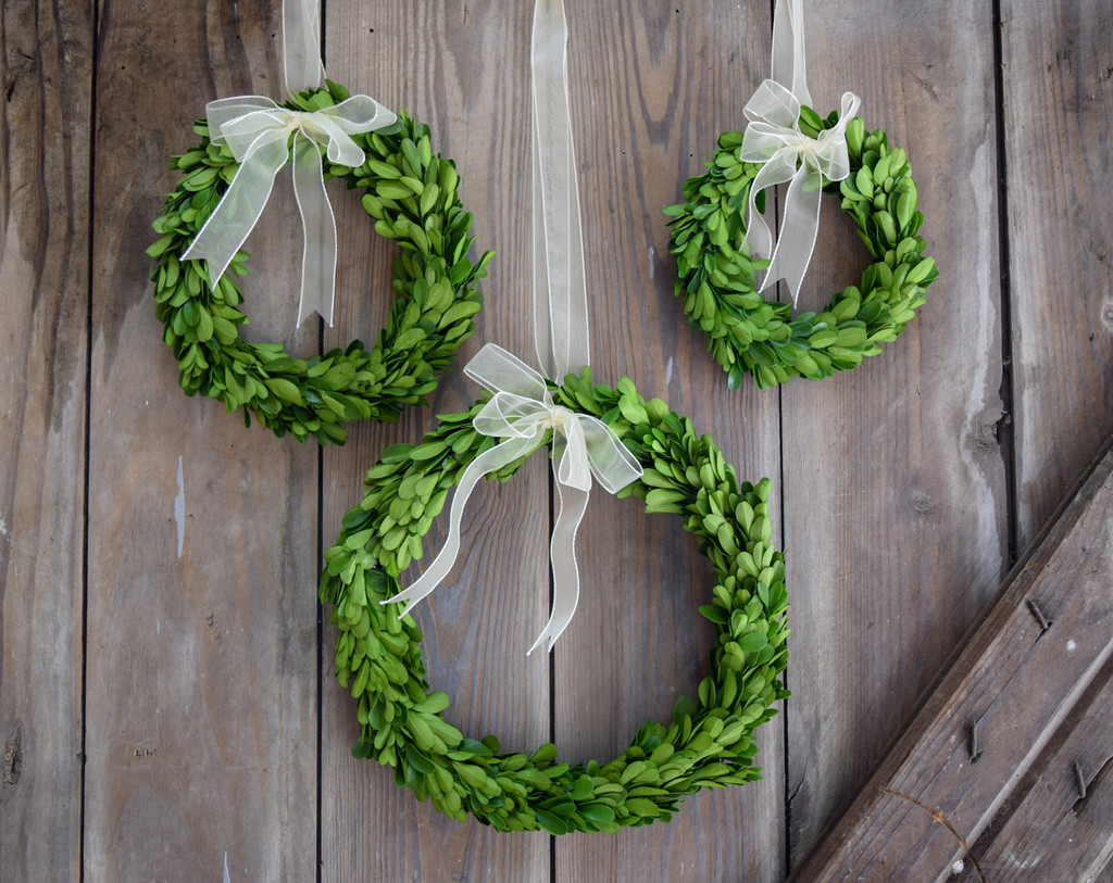 PRESERVED BOXWOOD WREATH - ROUND W/ RIBBON - 3 PC SET