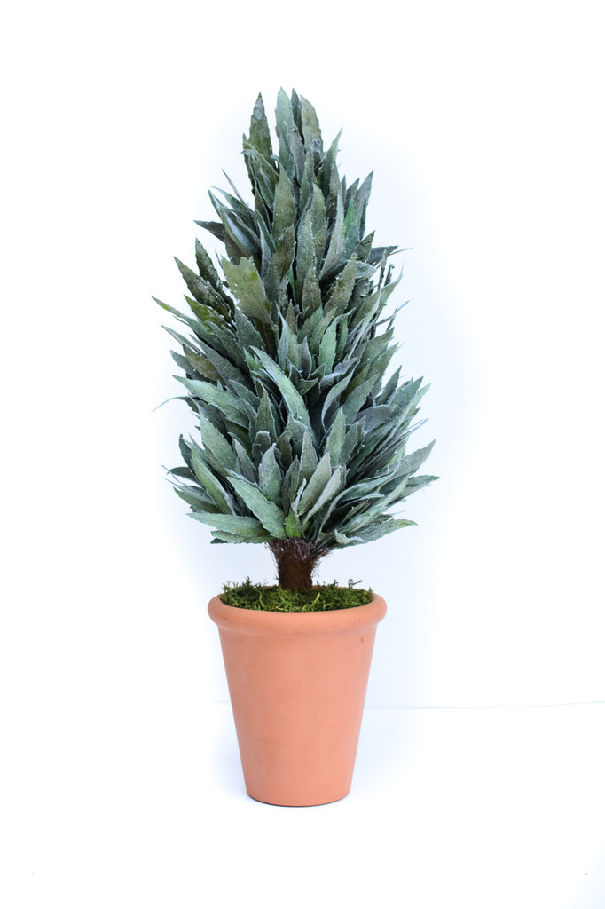"""PRESERVED MAHONIA FROSTED CONE TOPIARY - 20"""""""