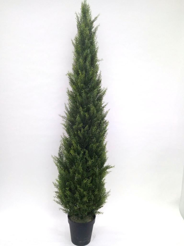CYPRESS CONE TREE 6' (UV) FAUX