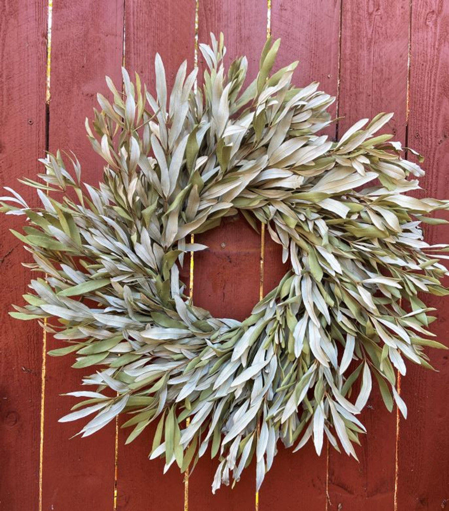 """NATURAL INTEGRIFOLIA 24"""" WREATH - PACKED 2"""