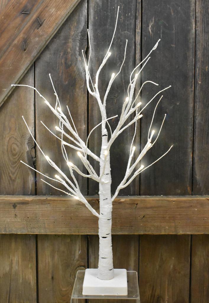 "LIGHTED BIRCH BONSAI TREE - 18"""