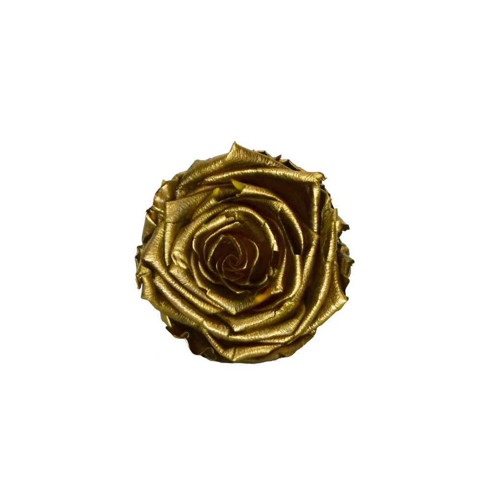 PRESERVED ROSE HEAD - GOLD - 5-6 CM DIAM. 6 HEADS