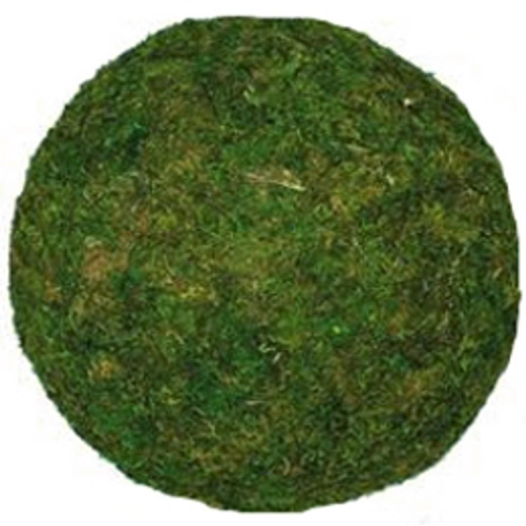 """MOSS BALL - GREEN - 8"""" MEDIUM - PACKED 4"""