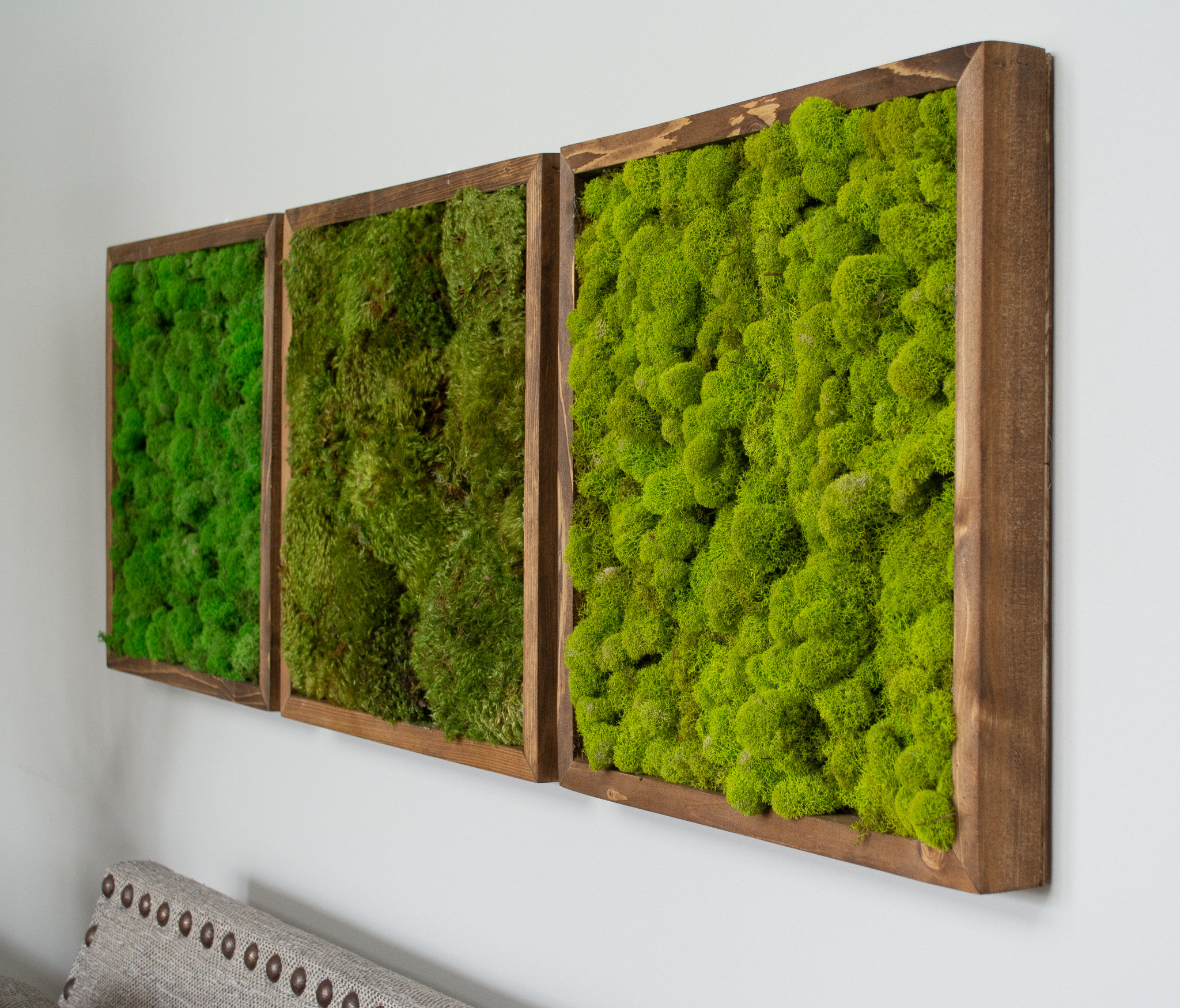 Moss Wall Art 16 Square Frame Chartreuse Brown Mills Floral