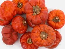 Pumpkins - Mini - 12 pc