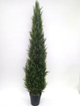 CYPRESS CONE TREE 6' (UV) FAUX