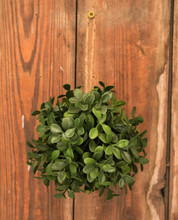 "ARTIFICIAL BOXWOOD 5"" BALL"