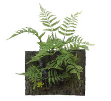 "FERN WALL ART 21""H X 15.25""L"