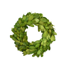 "BOXWOOD 4.5"" CANDLE RING - MIN 4"
