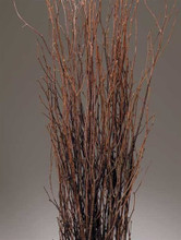 BIRCH BRANCHES NATURAL 10 PCS PACKED 12