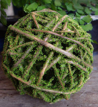"""CURLY WILLOW BALL - MOSS COATED - 8"""" - 4 BALLS/CASE"""
