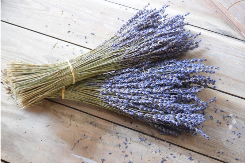 Unique Lavender Uses
