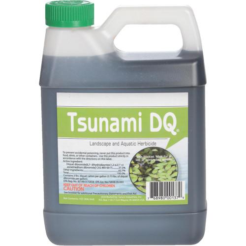 CRYSTAL BLUE TSUNAMI DQ