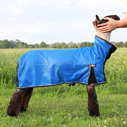 COOL TECH  SHEEP BLANKET