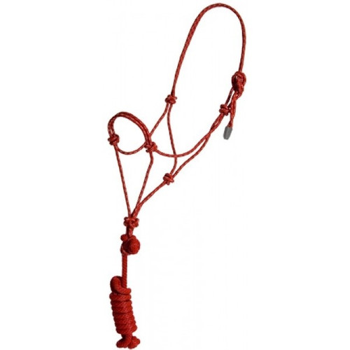 Economy Mountain Rope Halter and Lead    Yearling