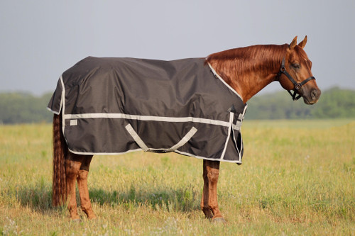 FUTURITY WATERPROOF TURNOUT BLANKET