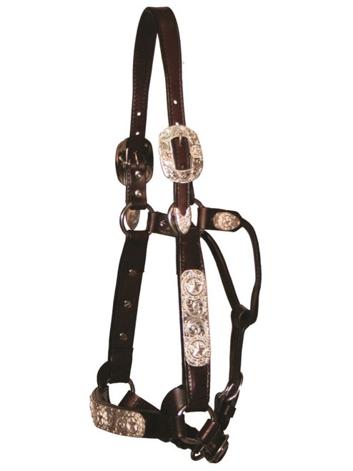 SILVER MESA LONE STAR SHOW HALTER, Size Horse #SM0600-1000