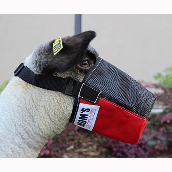 CORDURA SHEEP AND GOAT MUZZLE