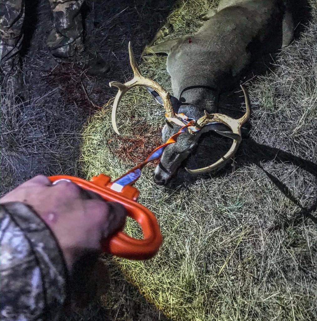 Perfect Deer Drag